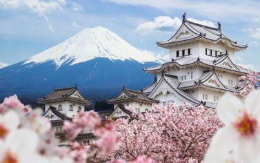 Combo du lịch Nhật Bản